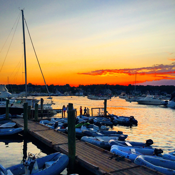 Oak Bluffs Harbor Sunset