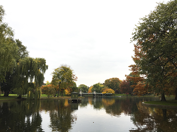 rainy-fall-boston-public-garden